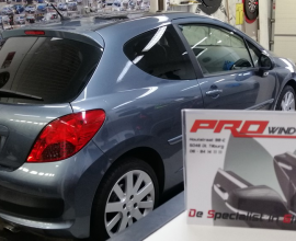 Ramen Blinderen Peugeot